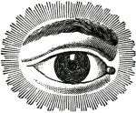 Free-Public-Domain-Watching-Eye
